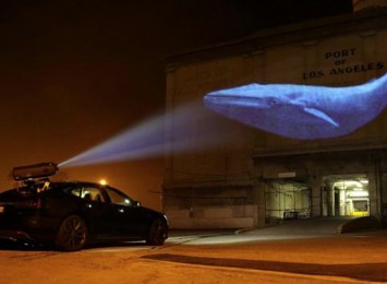 a whale is projected onto a wall from a car